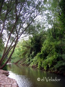 rio_mundo_litor_agua_naturaleza